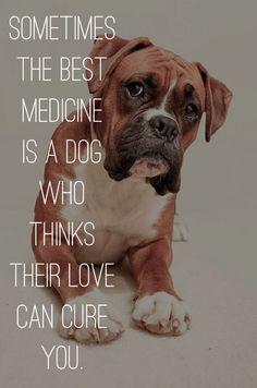 Love...the best medicine. #dogs #doglovers #love