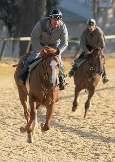 Exercise riders take thoroughbred horses around the track during training at Ocala Stud in Ocala, Fla.