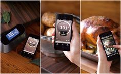 williams sonoma smart thermometer review - Google Search