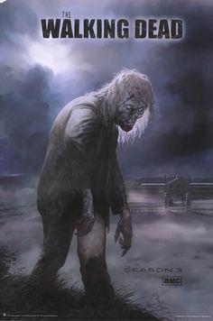 Walking Dead Season 3 Zombie TV Show Poster 24x36