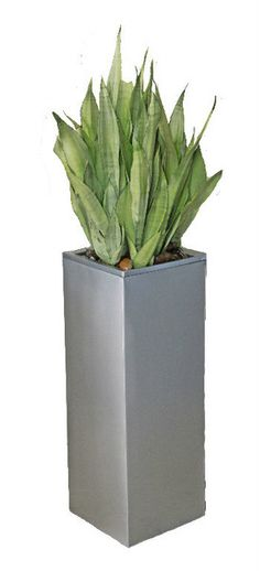 "Sleek steel and a unique geometric shape make the 38"" Miramas square metal planter a sophisticated stunner.  Galvanized metal construction complements industrial materials like stainless steel and glass Pair with warm woods and textiles for a touch of modern, urban style Line up or group together for maximum impact  Availability: In Stock - Closeout Item - Call about large orders. Ships next business day Drainage: Drainage holes optional Material: Galvanized Steel Standing over three feet…"