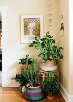 Love this little plant corner! /// Eclectic Living Room by Hado Photo - Love this little plant corner! /// Eclectic Living Room by Hado Photo Eclectic Living Room, Living Room Corner, Corner Plant, Bedroom Plants, Room Corner, Dining Room Corner, Corner Decor, House Plants Decor, Living Room Plants