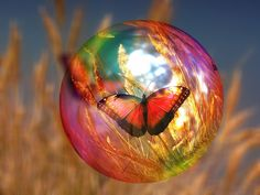 Sleep in Reiki Chi Ball to Manifest Anything Using the Power of Subconscious Mind Butterfly Facts For Kids, Animal Reiki, Reiki Room, Raindrops And Roses, Reiki Symbols, Fractal, Soap Bubbles, Subconscious Mind, Christmas Bulbs