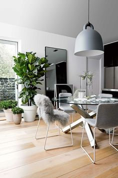 Pictures of modern dining room decorating ideas. Big pendant lamp & glass dining table for a modern interior design. Big pendant lamp & glass dining table for a modern interior design. Decoration Inspiration, Dining Room Inspiration, Decor Ideas, Decorating Ideas, Home Decoration, Küchen Design, Home Design, Design Ideas, Design Projects