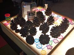 Pinecones and rainbow chips on the light table