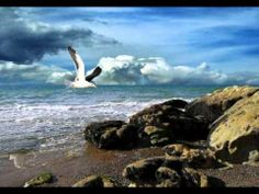 14 Free Minutes With Any Reading Package at LUCEMPACEM at Oranum additional coupon: Up to Off Psychic Readings + Free 3 Minutes and Off Sitewide Sense Of Sight, Folk, Camera World, Beach Wallpaper, Free Beach, Psychic Readings, Winter Is Coming, Ocean Beach, Beach Photos