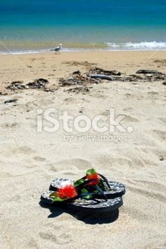Jandals by the Sea Royalty Free Stock Photo Kiwiana, Sea Photo, Turquoise Water, Christmas Background, Royalty Free Stock Photos, Beach, Holiday, Flowers, Summer