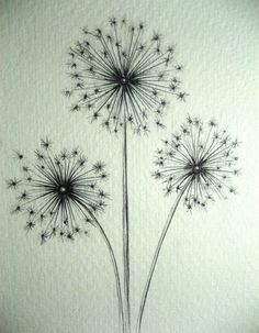 A Drawing a Day for a Year: April 8, 2011 - Starburst