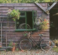 Bicycle, rustic, window, and flowers...so much to love...