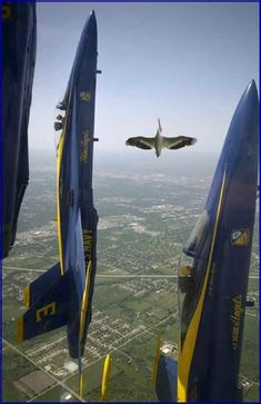 Guest Flyer for Blue Angles: Cute..