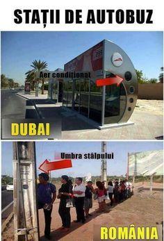 Funny Memes, Jokes, Life Humor, Romania, Dubai, Haha, Cute, Anime, Ouat Funny Memes