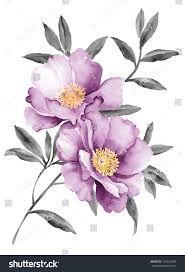 Risultati immagini per watercolor illustration flowers