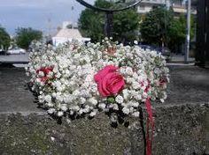 Αποτέλεσμα εικόνας για λουλουδια Φθινοπώρου Χρυσάνθεμα μπορντό χρώμα