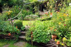 Cottage garden, July