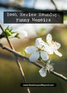 Interested in reading funny memoirs? Check out this roundup and see if any of them strike your fancy.   Book reviews by NewberyandBeyond.com