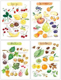 Fruit print set of 4 prints Four seasons art Watercolor