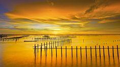 Bing Image Archive: Lagon Cigu à Tainan, Taïwan (© Sunrise@dawn Photography/Getty Images)(Bing France)