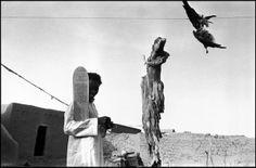 Abbas    MALI  Vila de Severi. A talibe (estudante) tem um tablet inscrito com surates do Alcorão. O pássaro morto pendurado na linha é usada para bruxaria. Preto Islão convive com o animismo, e