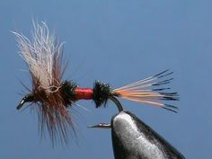 Fly Tying for Beginners a Royal Coachman with Jim Misiura