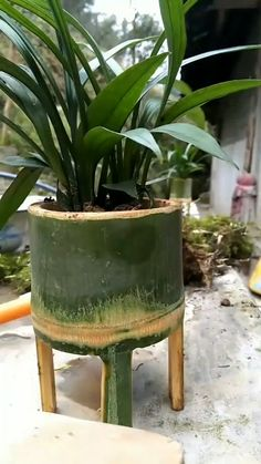 Bamboo Crafts, Flower Pots, Flowers, Balcony Design, Rustic Decor, Coffee Shop, Planter Pots, Eco Friendly, Woodworking