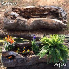 Log planter                                                                                                                                                      More