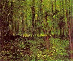 Vincent Van Gogh,Trees and Undergrowth, 1887