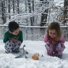 Kids in their pjs playing with dinosaurs in the snow  Check out more from  mom blogger @onemilesmileblog  _ _ _ #FollowFriday #featurefriday #mommyblogger #momblogger #mamablog #snow #pajamasoutside #dinosaur #pjpals #pajamamamamonday #itsfriday #tgif #jammiedaddiestoo #dontforgetotherpjpals #childrensbook #kidlit #reading #kidbookstagram #discover #explore #play #playallday #qualitytime #family #friends #letthembelittle #erinecarter #childrensbookauthor #childrensbookillustrator…