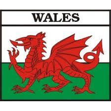 Ot Worki, Welsh Flag, Welsh Dragons, Flag Google, Ancestors Lived, Flags, Letter, The Dragon