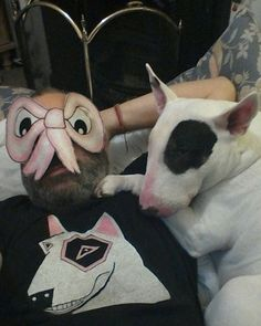 BULLY LIFE #bullterrier #mingland #isleofwhy #ladypat #angrypussybow #pinktriangle
