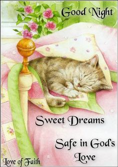 Good night sister and all, may you have a peaceful night, sweet dreams☆♡☆. Good Night My Friend, Good Night Greetings, Creation Photo, Gatos Cats, Cat Sketch, Good Night Sweet Dreams, Nighty Night, Good Night Sleep Tight, Vintage Cat