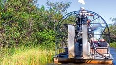 Everglades Tour - Any Available Date Through June 30, 2017 (Reserve in Advance)