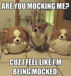 ARE YOU MOCKING ME?!!?