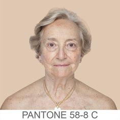 humanæ - pantone
