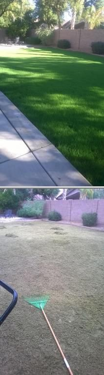 This enterprise provides professional tree pruning services for home and business clients at affordable rates. They perform quality landscaping installation and design, painting, and more. Learn more about this Phoenix based pruner on Thumbtack.com.
