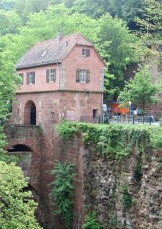 This photo of Heidelberg Castle in Germany, was taken while on a European trip that featured a Viking River cruise.