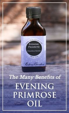 The therapeutic nature of Evening Primrose carrier oil is primarily due to the essential fatty acid content, which is highly beneficial to the skin. Edens Garden Oils, Edens Garden Essential Oils, Essential Oils For Headaches, Young Living Essential Oils, Herbal Remedies, Natural Remedies, Essential Fatty Acids, Oil Uses, Carrier Oils