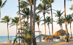 Punta Cana Secrets