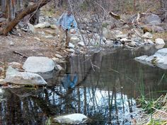 A hiker is reflected in Matiilija Creek during the hike to Middle Matilija Camp.