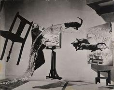 Dali Atomicus, 1948 © Philippe Halsman Archives.  -  #portrait #portraitphotography #selfportrait #selfie #concept #style #blackandwhitephotography #BnW #bw #blackandwhite #photoshoot #image #photography #photo #abstract #stylish #art #visual #studio #shop #shoppingonline #onlinestore #artist #face #conceptphotography #photojournalist #photographer #photogram #streetphotography #photographydocumentary #mensstyle #fashion #fashionphotography #Dali #vintagephotography