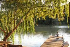 The Cape is brimming with remote waterside getaways. Here's our scenic selection of river retreats that'll float your boat. Best Weekend Getaways, Float Your Boat, Cape Town, Small Towns, South Africa, Remote, Good Things, River, Places