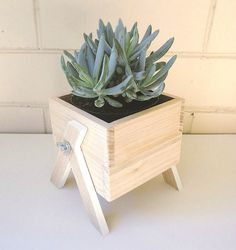 Have your own little box of greenery indoors! These miniature planter boxes hav Wooden Planter Boxes, Diy Planter Box, Succulent Planter Diy, Diy Planters, Deck Railing Planters, Succulent Containers, Container Plants, Container Gardening, Woodworking Joints