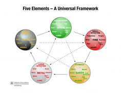 Five Elements Modified by TCM World Foundation
