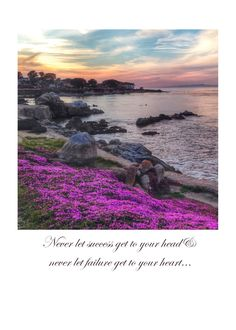 """5""""x7"""" Greeting Card on matte card stock, blank inside//Monterey//Pacific Grove, California photograph//Inspiring Quote by evokingimages on Etsy"""