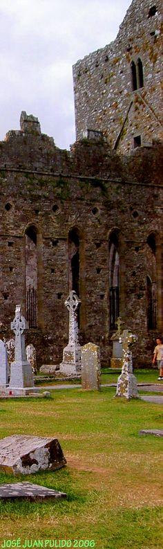 Irlanda  La Roca de Cashel. Cementerios juntoa las ruinas de la catedral de Cashel. Ireland     The Rock of Cashel. Cemeteries next to the ruins of the cathedral of Cashel
