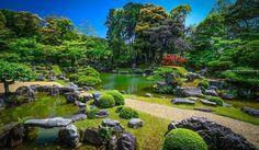 #shinryoku #daigoji #garden #temple #fushimi #kyoto #japan #sonya7…