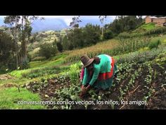 AGROECOLOGÍA: Producir para Vivir Bien (2013) [TRAILER] - YouTube