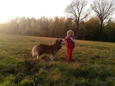 husky with little girl
