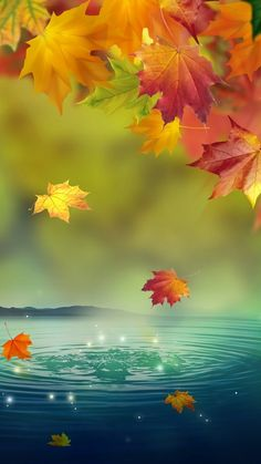 Magical fall leaves and lake digital illustration phone wallpaper / background. Flower Phone Wallpaper, Fall Wallpaper, Cellphone Wallpaper, Colorful Wallpaper, Wallpaper Backgrounds, Leaves Wallpaper, Wallpaper Lockscreen, Apple Wallpaper, Halloween Wallpaper