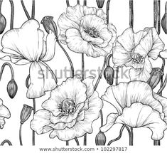 Flower Drawings Noir et blanc Illustrated Fleurs Mural - Create a personalised feature wall with the Black and White Illustrated Flowers Wallpaper, a stylish black and white flower wallpaper that will suit many styles. Gravure Illustration, Illustration Blume, White Flower Wallpaper, Azulejos Art Nouveau, Flower Line Drawings, Drawing Flowers, Poppy Pattern, Plant Drawing, Wall Drawing