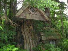 Tree Stump house on the grounds of the River Rock Inn near Everett, WA
